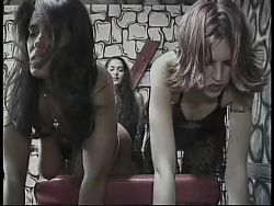 Mistress gives discipline lesson
